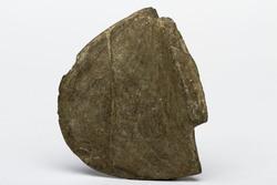 Bannerstone AMNH 20.1/3886