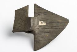 Bannerstone AMNH DM/1489